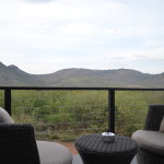 A 5 star Pilanesberg Getaway at Shepherd's Tree Game Lodge