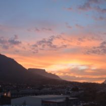 Cape Town: From the City to Safari